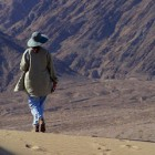 7 Facts You Should Know about Walking