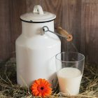 "Which ""Milk"" is the Right Milk for You?"